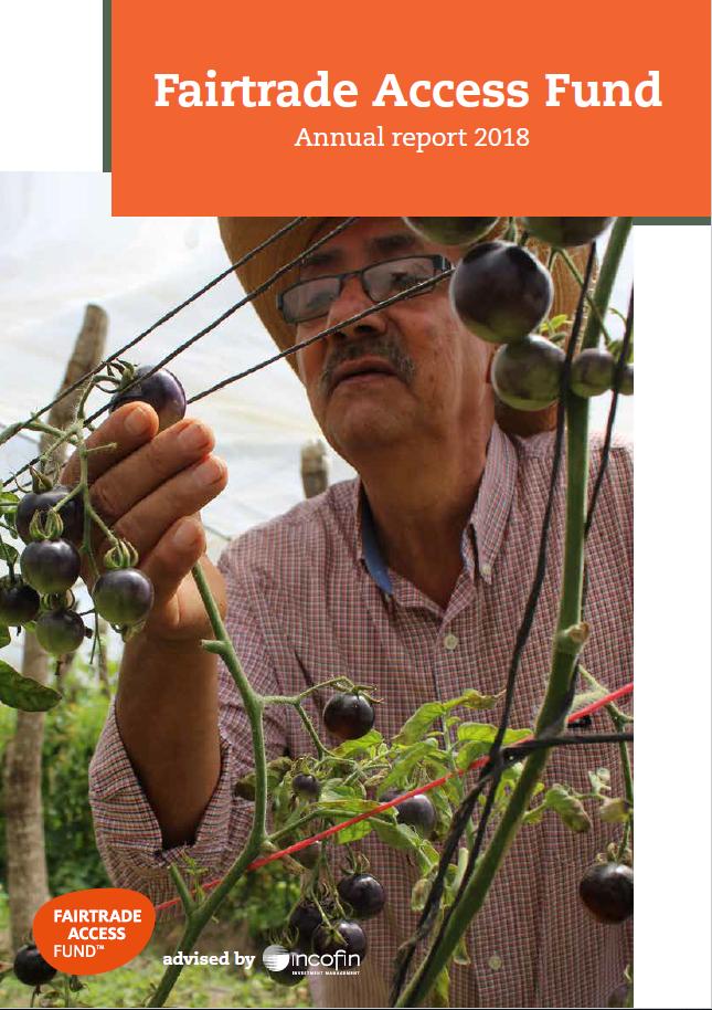 FAF annual report