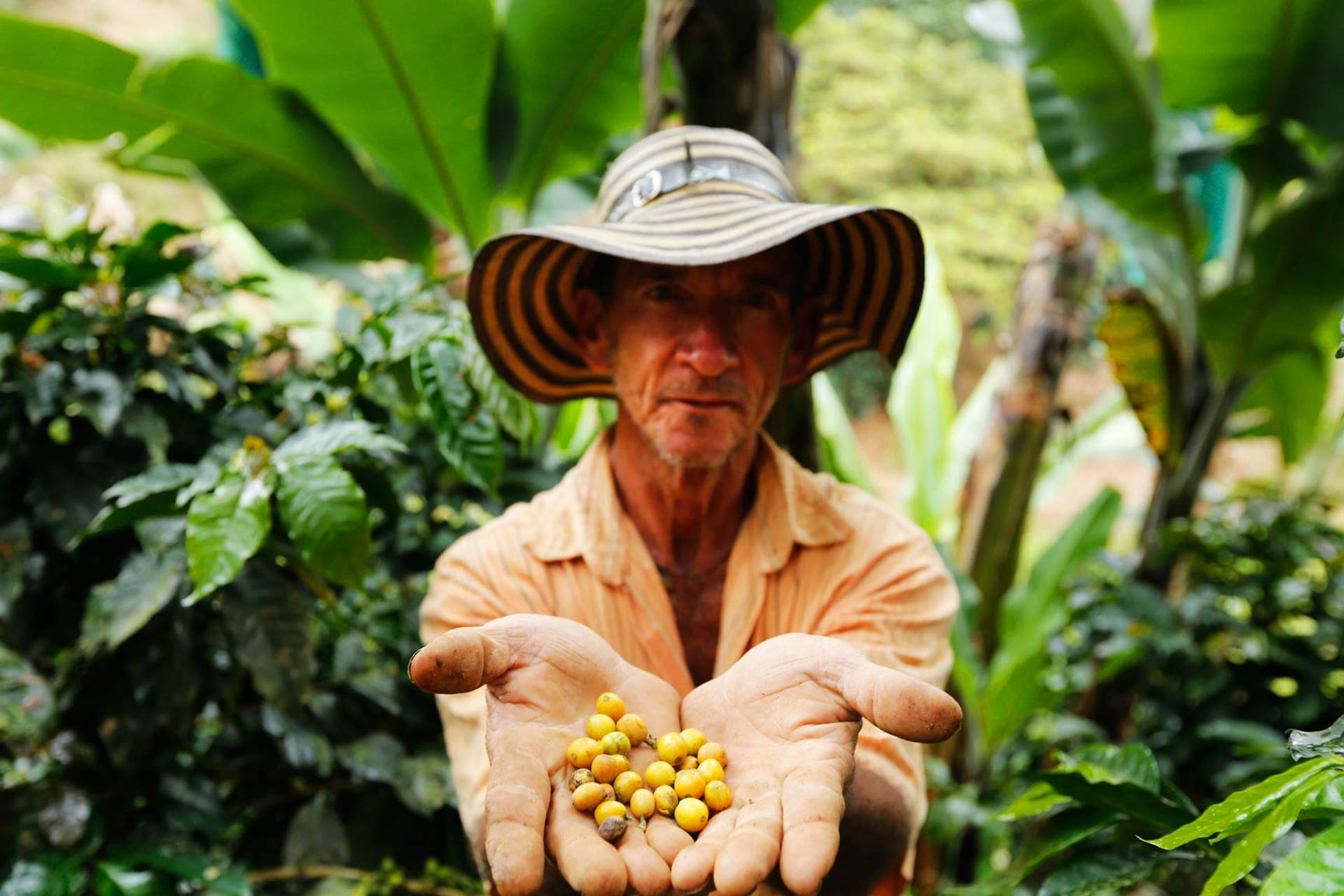 man holding coffeebeans